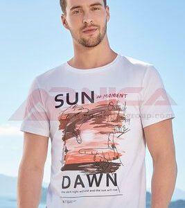 Мъжки тениски с картинки бяла
